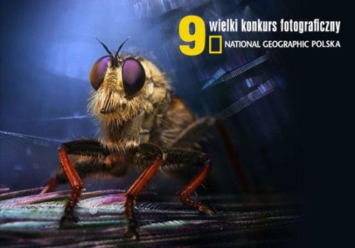 WKF-NationalG