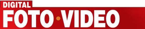 DFV-logo