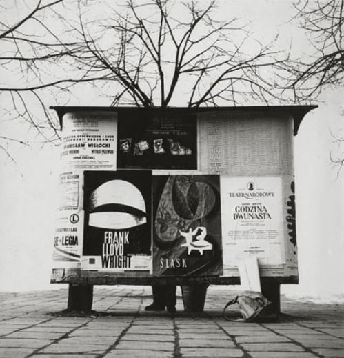 Zamecznik-W-Warszawa1