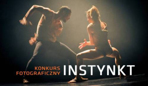 Konkurs fotograficzny-Instynkt