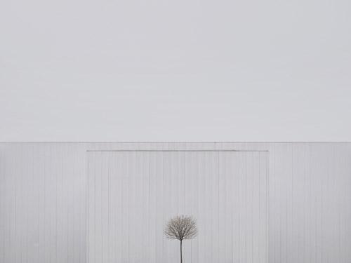 Bienale-Kraj_dufaj