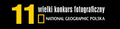 11-WKF-NGP