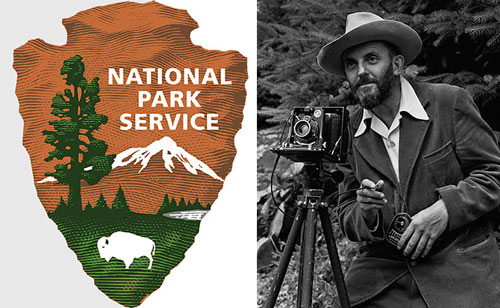 NPS-job
