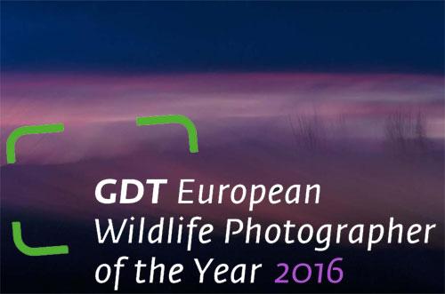 GDT2016