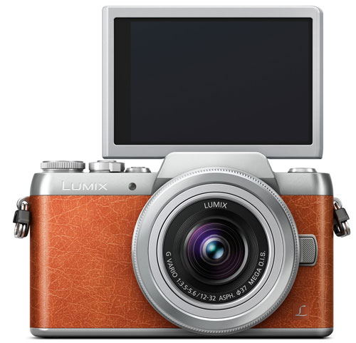 PanasonicDMC-GF8_3