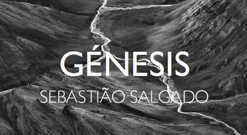 Salgado-S_genesis4
