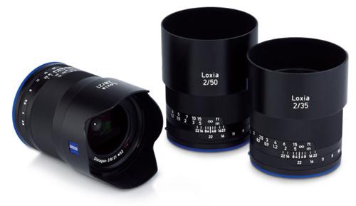 Loxia-family1
