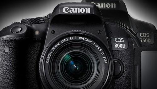 Canon EOS 800D vs Canon EOS 750D | Polfoto